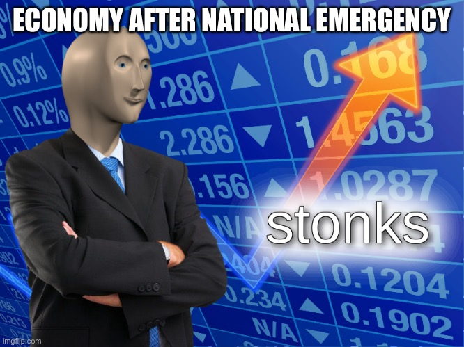 stonks | ECONOMY AFTER NATIONAL EMERGENCY | image tagged in stonks | made w/ Imgflip meme maker