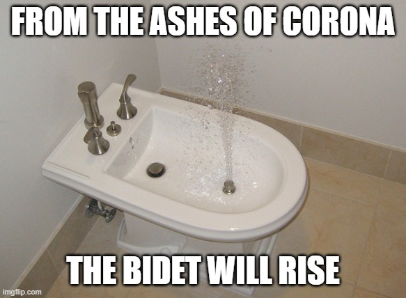 Happy Bidet Memes - ashes of corona bidet will rise