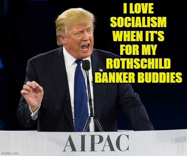 ancrap libtardaryans |  I LOVE SOCIALISM WHEN IT'S FOR MY ROTHSCHILD BANKER BUDDIES | image tagged in donald trump,zionist | made w/ Imgflip meme maker