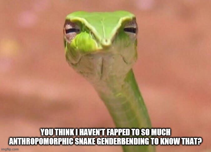 Skeptical snake | YOU THINK I HAVEN'T FAPPED TO SO MUCH ANTHROPOMORPHIC SNAKE GENDERBENDING TO KNOW THAT? | image tagged in skeptical snake | made w/ Imgflip meme maker