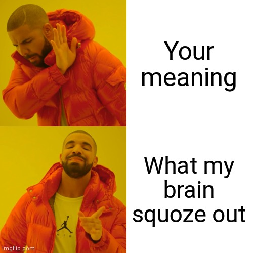 Drake Hotline Bling Meme | Your meaning What my brain squoze out | image tagged in memes,drake hotline bling | made w/ Imgflip meme maker