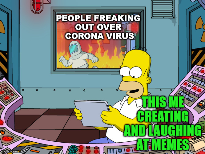 Not many freaking out but I know of a couple who are. Always be prepared in the future. |  PEOPLE FREAKING  OUT OVER  CORONA VIRUS; THIS ME CREATING AND LAUGHING AT MEMES | image tagged in homer simpson,corona virus,freak out,panic | made w/ Imgflip meme maker