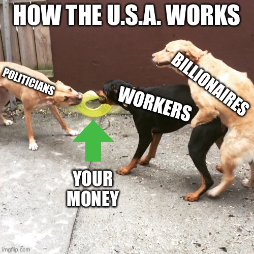 One Sided Dog Fight | HOW THE U.S.A. WORKS BILLIONAIRES WORKERS POLITICIANS YOUR MONEY | image tagged in one sided dog fight | made w/ Imgflip meme maker