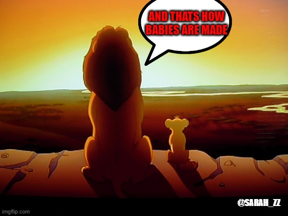 Lion King | AND THATS HOW BABIES ARE MADE @SARAH_ZZ | image tagged in memes,lion king | made w/ Imgflip meme maker
