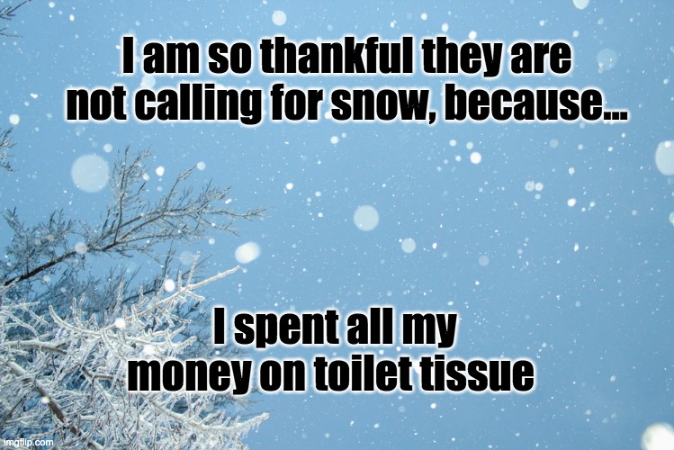 I am so thankful they are not calling for snow, because... I spent all my money on toilet tissue | image tagged in snow,corona virus,toilet paper | made w/ Imgflip meme maker
