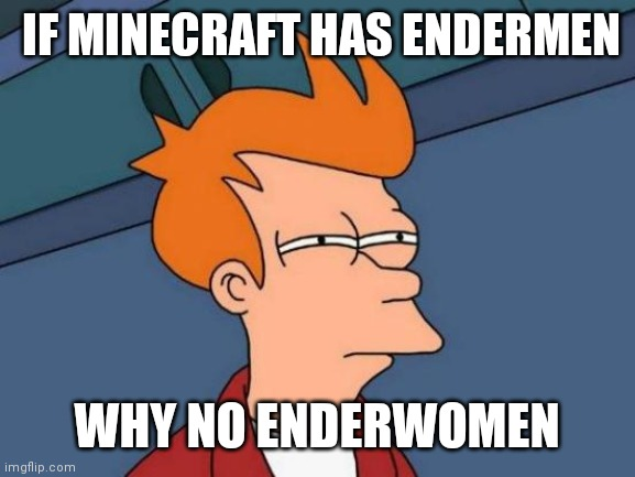 Futurama Fry Meme | IF MINECRAFT HAS ENDERMEN WHY NO ENDERWOMEN | image tagged in memes,futurama fry | made w/ Imgflip meme maker
