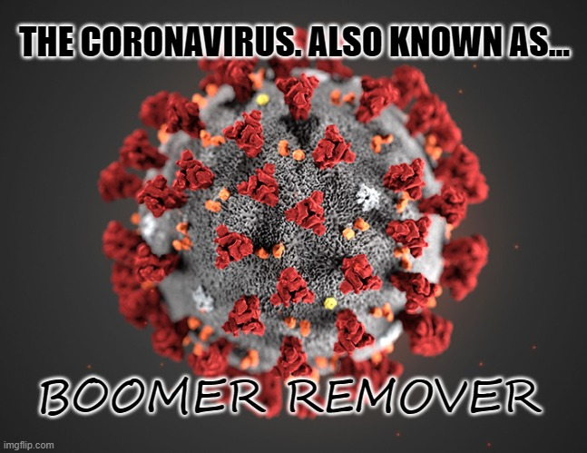 The Boomer Remover | THE CORONAVIRUS. ALSO KNOWN AS... BOOMER REMOVER | image tagged in coronavirus,baby boomers,funny,memes,punny,death | made w/ Imgflip meme maker