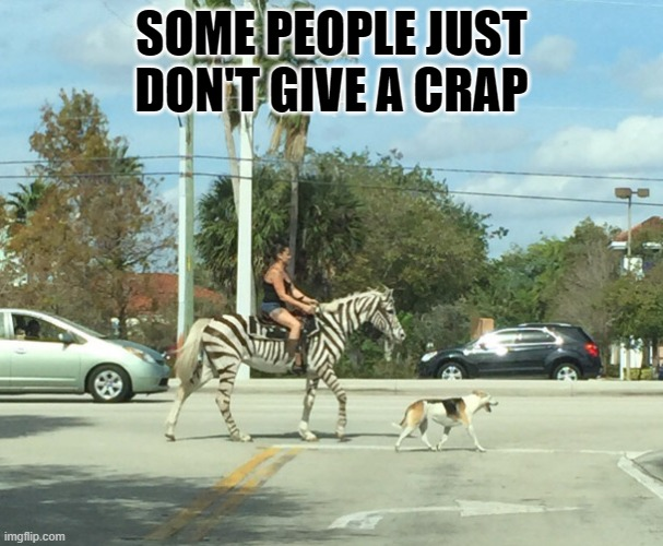 no craps given |  SOME PEOPLE JUST DON'T GIVE A CRAP | image tagged in zebra,lady | made w/ Imgflip meme maker