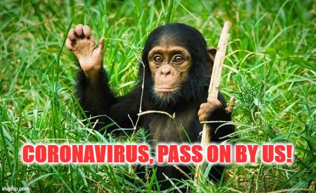 goodbye |  CORONAVIRUS, PASS ON BY US! | image tagged in goodbye | made w/ Imgflip meme maker