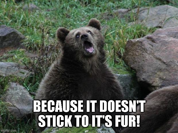 Sarcastic Bear | BECAUSE IT DOESN'T STICK TO IT'S FUR! | image tagged in sarcastic bear | made w/ Imgflip meme maker