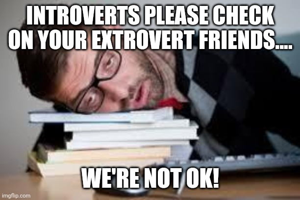 Image result for check on extroverts we are not ok