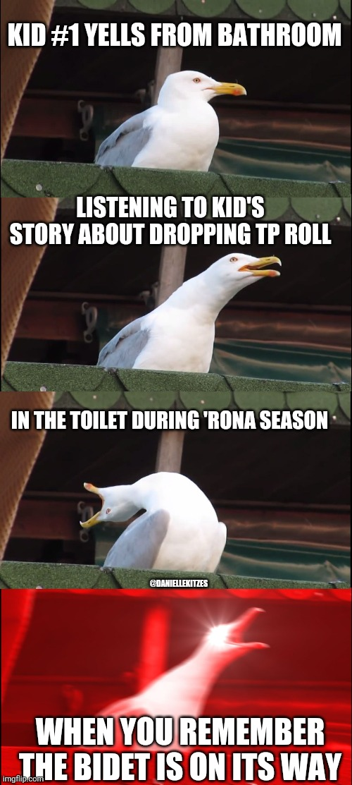 Inhaling Seagull Meme | KID #1 YELLS FROM BATHROOM LISTENING TO KID'S STORY ABOUT DROPPING TP ROLL IN THE TOILET DURING 'RONA SEASON WHEN YOU REMEMBER THE BIDET IS  | image tagged in memes,inhaling seagull | made w/ Imgflip meme maker