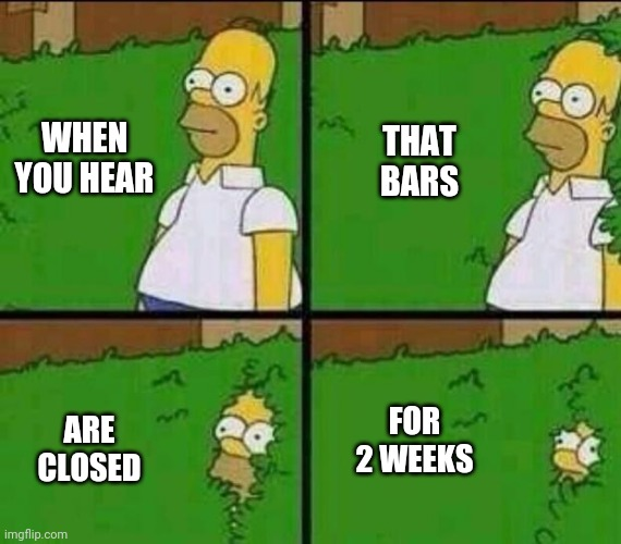 Homer Simpson in Bush - Large |  WHEN YOU HEAR; THAT BARS; ARE CLOSED; FOR 2 WEEKS | image tagged in homer simpson in bush - large,bars,alcohol,simpsons,coronavirus | made w/ Imgflip meme maker