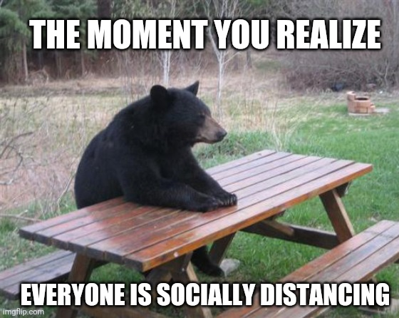 Bad Luck Bear Meme | THE MOMENT YOU REALIZE EVERYONE IS SOCIALLY DISTANCING | image tagged in memes,bad luck bear,coronavirus,covid-19,quarantine | made w/ Imgflip meme maker