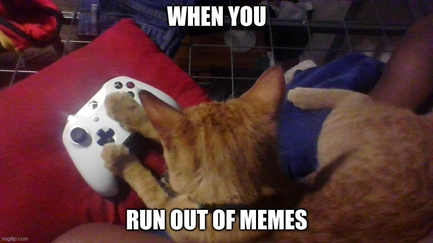 when you run out of memes |  WHEN YOU; RUN OUT OF MEMES | image tagged in see nobody cares | made w/ Imgflip meme maker