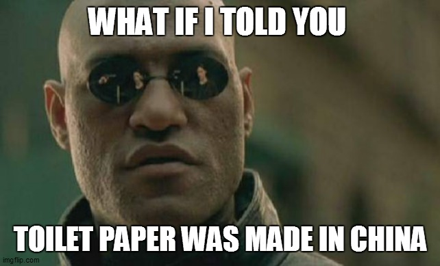 Matrix Morpheus Meme | WHAT IF I TOLD YOU TOILET PAPER WAS MADE IN CHINA | image tagged in memes,black girl wat | made w/ Imgflip meme maker
