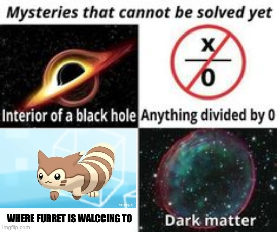 Mysteries That Cannot Be Solved Yet | WHERE FURRET IS WALCCING TO | image tagged in mysteries that cannot be solved yet | made w/ Imgflip meme maker