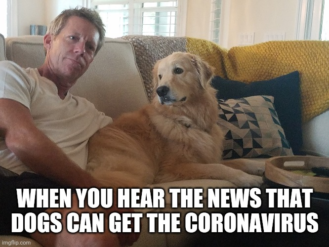 WHEN YOU HEAR THE NEWS THAT DOGS CAN GET THE CORONAVIRUS | image tagged in coronavirus,golden retriever,dogs | made w/ Imgflip meme maker