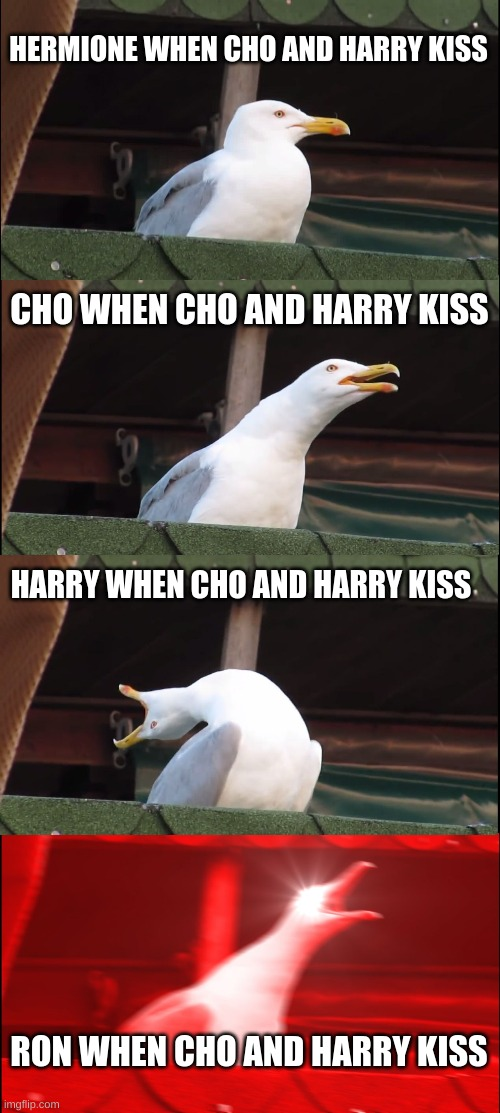 Inhaling Seagull Meme | HERMIONE WHEN CHO AND HARRY KISS CHO WHEN CHO AND HARRY KISS HARRY WHEN CHO AND HARRY KISS RON WHEN CHO AND HARRY KISS | image tagged in memes,inhaling seagull | made w/ Imgflip meme maker
