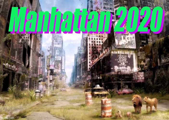 Manhattan 2020 | image tagged in manhattan 2020 | made w/ Imgflip meme maker