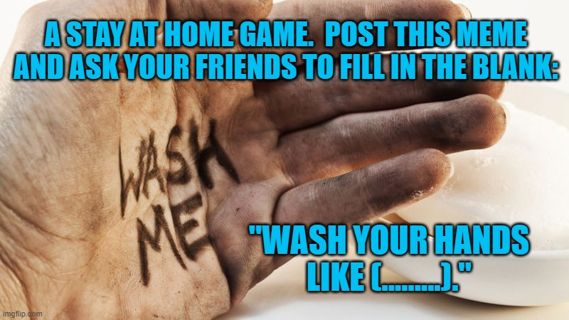 "Wash Me | A STAY AT HOME GAME.  POST THIS MEME AND ASK YOUR FRIENDS TO FILL IN THE BLANK: ""WASH YOUR HANDS LIKE (.........)."" 