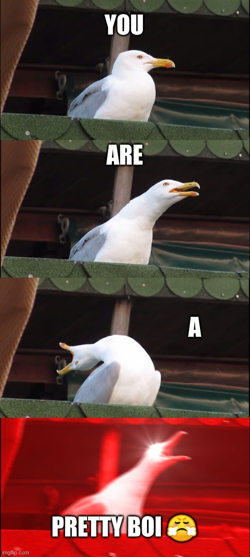 Inhaling Seagull Meme | YOU ARE A PRETTY BOI ? | image tagged in memes,inhaling seagull | made w/ Imgflip meme maker