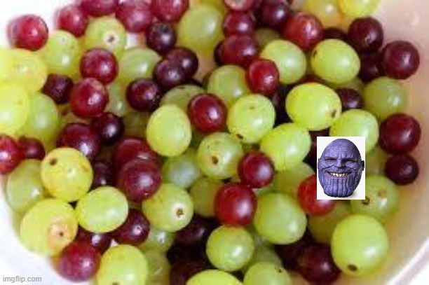 Grapes... | image tagged in grapes | made w/ Imgflip meme maker
