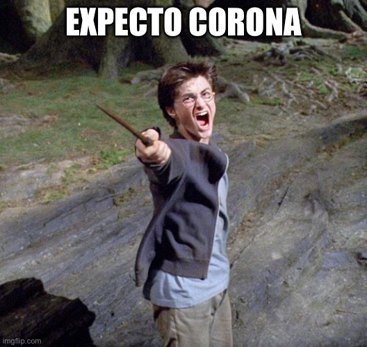 Harry potter |  EXPECTO CORONA | image tagged in harry potter | made w/ Imgflip meme maker
