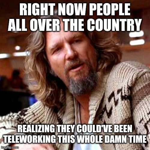 Confused Lebowski |  RIGHT NOW PEOPLE ALL OVER THE COUNTRY; REALIZING THEY COULD'VE BEEN TELEWORKING THIS WHOLE DAMN TIME | image tagged in memes,confused lebowski | made w/ Imgflip meme maker