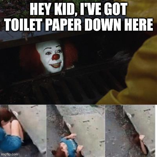 pennywise in sewer |  HEY KID, I'VE GOT TOILET PAPER DOWN HERE | image tagged in pennywise in sewer | made w/ Imgflip meme maker