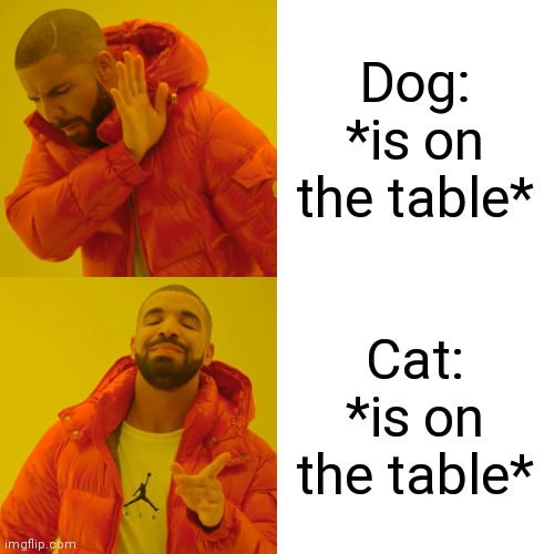 Anyone understand? | Dog: *is on the table* Cat: *is on the table* | image tagged in memes,drake hotline bling | made w/ Imgflip meme maker