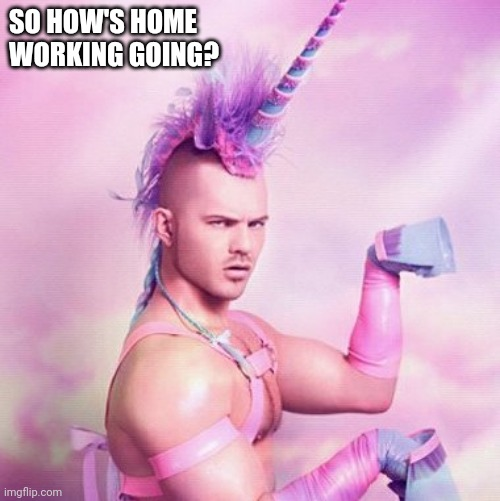 Unicorn MAN | SO HOW'S HOME WORKING GOING? | image tagged in memes,unicorn man | made w/ Imgflip meme maker