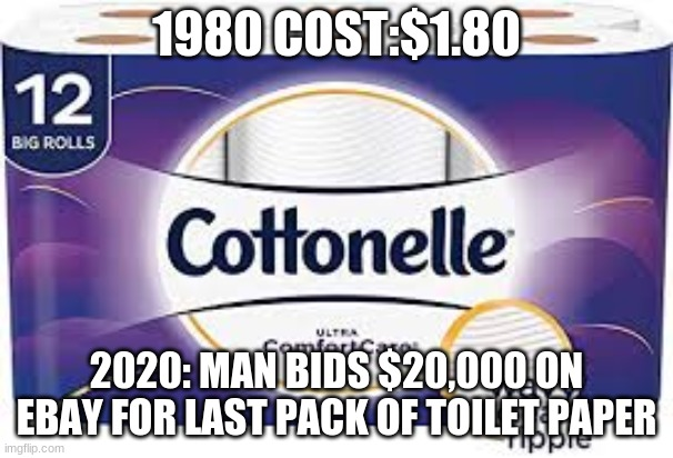 :( | 1980 COST:$1.80 2020: MAN BIDS $20,000 ON EBAY FOR LAST PACK OF TOILET PAPER | image tagged in coronavirus,corona virus | made w/ Imgflip meme maker