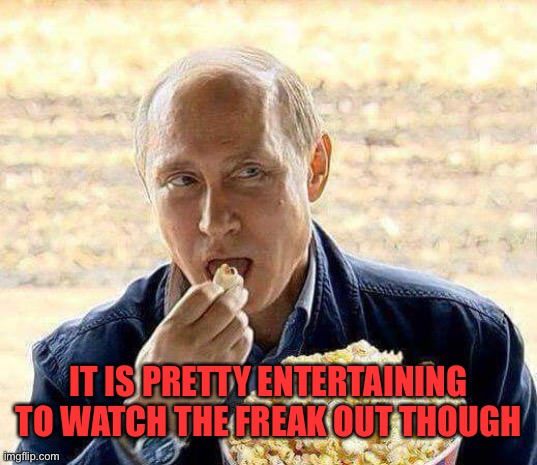 Putin Popcorn | IT IS PRETTY ENTERTAINING TO WATCH THE FREAK OUT THOUGH | image tagged in putin popcorn | made w/ Imgflip meme maker