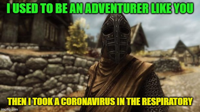 I used to be an adventurer like you | I USED TO BE AN ADVENTURER LIKE YOU THEN I TOOK A CORONAVIRUS IN THE RESPIRATORY | image tagged in i used to be an adventurer like you | made w/ Imgflip meme maker