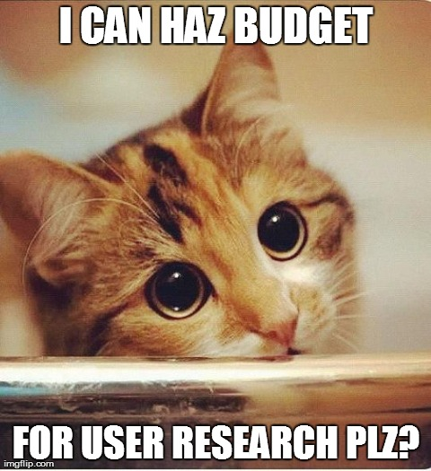 I CAN HAZ BUDGET FOR USER RESEARCH PLZ? | image tagged in begging kitteh | made w/ Imgflip meme maker