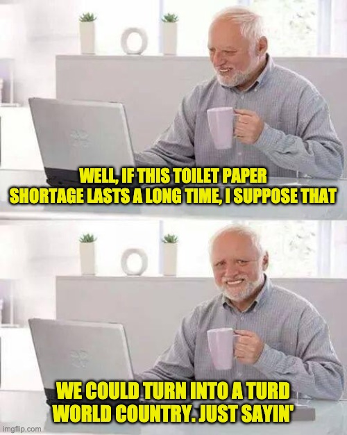 Hide the Pain Harold Meme | WELL, IF THIS TOILET PAPER SHORTAGE LASTS A LONG TIME, I SUPPOSE THAT WE COULD TURN INTO A TURD WORLD COUNTRY. JUST SAYIN' | image tagged in memes,hide the pain harold | made w/ Imgflip meme maker