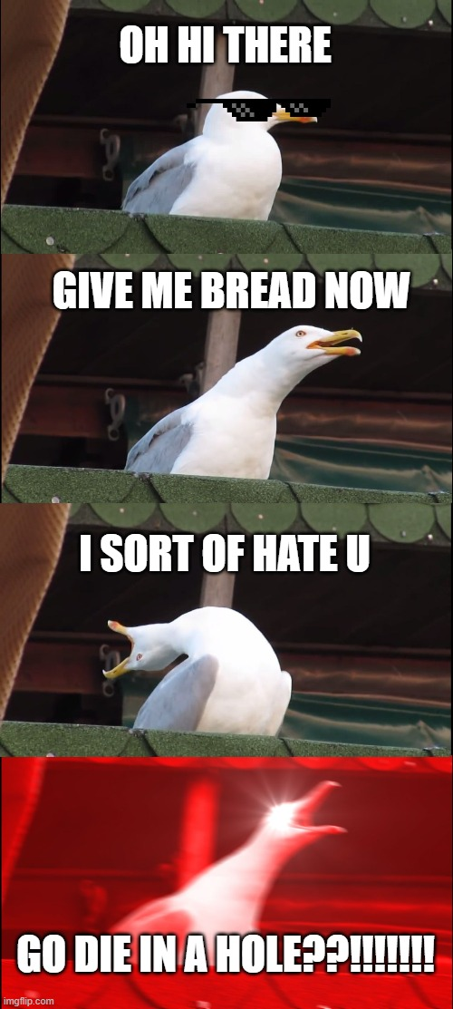 Inhaling Seagull Meme | OH HI THERE GIVE ME BREAD NOW I SORT OF HATE U GO DIE IN A HOLE??!!!!!!! | image tagged in memes,inhaling seagull | made w/ Imgflip meme maker