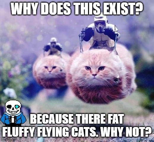 Storm Trooper Cats | WHY DOES THIS EXIST? BECAUSE THERE FAT FLUFFY FLYING CATS. WHY NOT? | image tagged in storm trooper cats | made w/ Imgflip meme maker