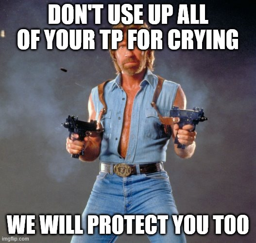 Chuck Norris Guns Meme | DON'T USE UP ALL OF YOUR TP FOR CRYING WE WILL PROTECT YOU TOO | image tagged in memes,chuck norris guns,chuck norris | made w/ Imgflip meme maker