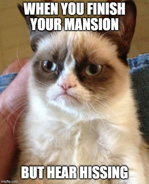 Grumpy Cat |  WHEN YOU FINISH YOUR MANSION; BUT HEAR HISSING | image tagged in memes,grumpy cat | made w/ Imgflip meme maker