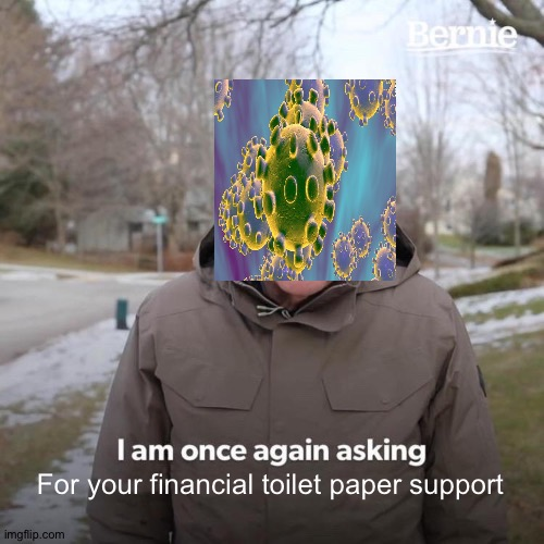 Bernie I Am Once Again Asking For Your Support Meme | For your financial toilet paper support | image tagged in memes,bernie i am once again asking for your support | made w/ Imgflip meme maker