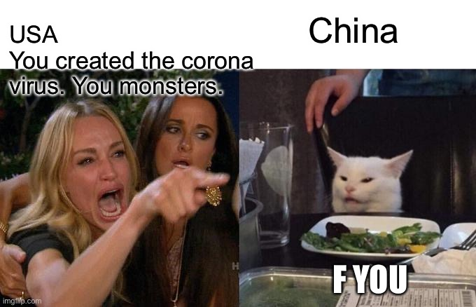 Woman Yelling At Cat |  USA You created the corona virus. You monsters. China; F YOU | image tagged in memes,woman yelling at cat | made w/ Imgflip meme maker