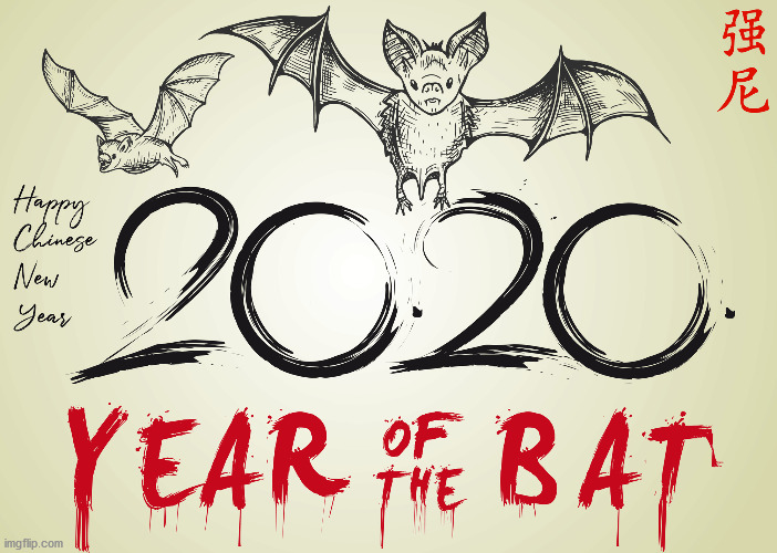 image tagged in coronavirus,year of the bat,year of the rat,chinese coronavirus meme,coronavirus meme | made w/ Imgflip meme maker