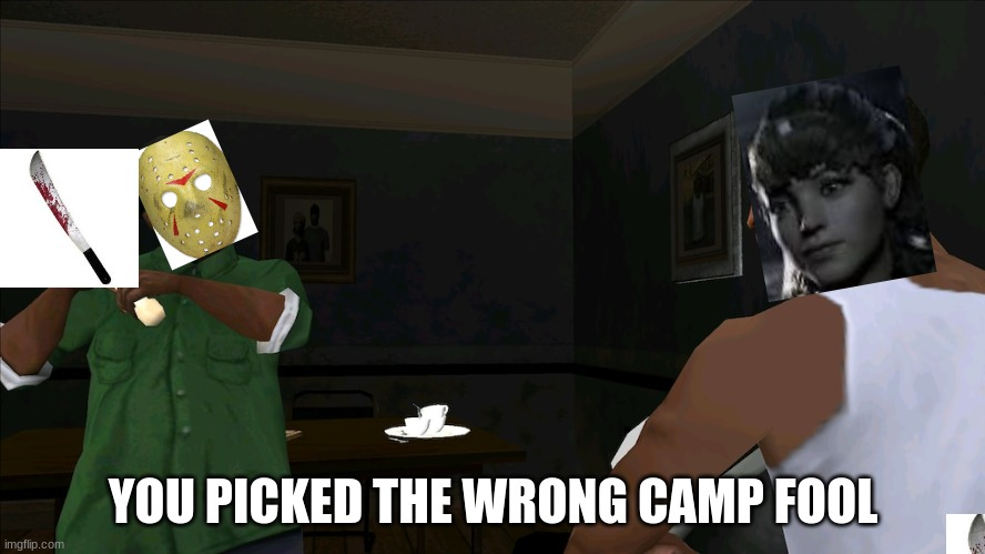 You picked the wrong house fool | YOU PICKED THE WRONG CAMP FOOL | image tagged in you picked the wrong house fool | made w/ Imgflip meme maker