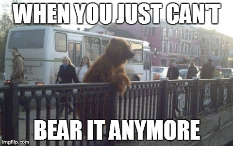 City Bear | WHEN YOU JUST CAN'T BEAR IT ANYMORE | image tagged in memes,city bear,bears,funny,puns | made w/ Imgflip meme maker