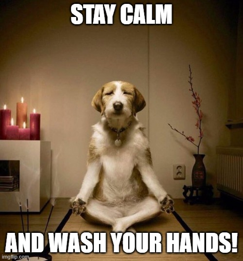 yoga dig | STAY CALM AND WASH YOUR HANDS! | image tagged in yoga dig | made w/ Imgflip meme maker