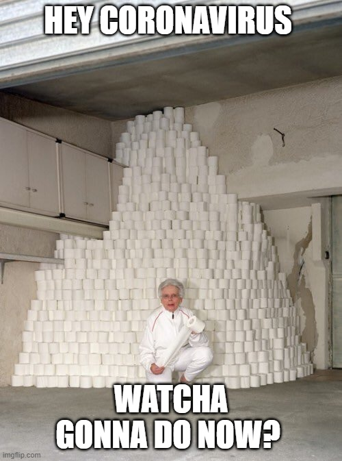 mountain of toilet paper | HEY CORONAVIRUS WATCHA GONNA DO NOW? | image tagged in mountain of toilet paper | made w/ Imgflip meme maker