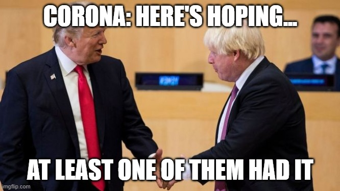Boris | CORONA: HERE'S HOPING... AT LEAST ONE OF THEM HAD IT | image tagged in boris | made w/ Imgflip meme maker