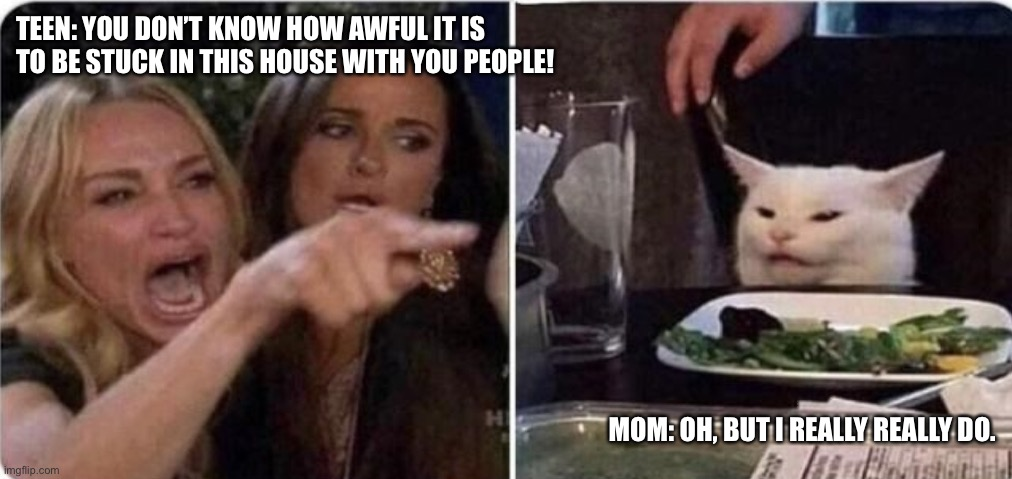 Angry women yelling at confused cat at dinner table | TEEN: YOU DON'T KNOW HOW AWFUL IT IS TO BE STUCK IN THIS HOUSE WITH YOU PEOPLE! MOM: OH, BUT I REALLY REALLY DO. | image tagged in angry women yelling at confused cat at dinner table | made w/ Imgflip meme maker